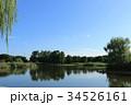 舎人公園 池 青空の写真 34526161