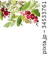 水彩画 カード 葉書のイラスト 34533761