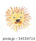 ライオンの絵 34534714