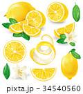 レモン 檸檬 フラワーのイラスト 34540560
