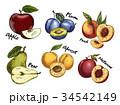 りんご アップル リンゴのイラスト 34542149