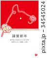 年賀状 水引 犬のイラスト 34545024
