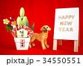 戌年 年賀状素材 赤色 HAPPY NEW YEAR A型看板 犬の置物 門松 横位置 34550551