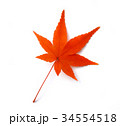 秋のイメージ:モミジ 34554518