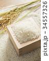 つきたての米と稲穂 34557326