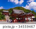 鶴岡八幡宮 八幡宮 舞殿の写真 34559467