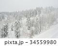 雪山 冬山 樹氷の写真 34559980