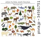 Flat Asian flora and fauna map constructor element 34561751