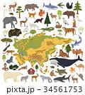 Flat Asian flora and fauna map constructor element 34561753