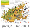 Isometric 3d Asian flora and fauna map constructor 34561831