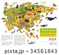 Flat Asian flora and fauna map constructor element 34561843