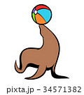 Fur seal circus icon cartoon 34571382