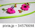 カラフルなお花 34576698