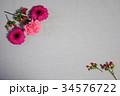 カラフルなお花 34576722