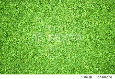 Green grass background 34580278