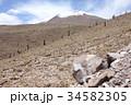 サボテン アタカマ 高地の写真 34582305
