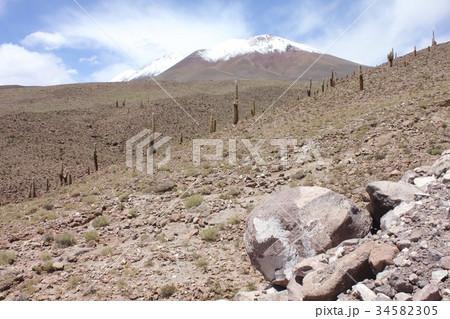 南米チリ北部アンデス山脈の麓、アタカマ高地の斜面に群生するサボテンと雪をいただく夏のアンデス 34582305