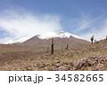 サボテン アタカマ 高地の写真 34582665
