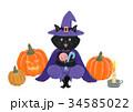 ハロウィン 黒猫 猫のイラスト 34585022