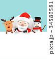 サンタクロース クリスマス 3Dのイラスト 34586581