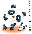 パンダ ジャイアントパンダ 大熊猫のイラスト 34589855