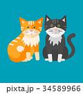 ベクトル ねこ ネコのイラスト 34589966