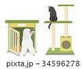 キャットタワーの猫とドッグハウスの犬 34596278