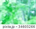 ナチュラル背景素材 34603266