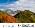 絶景 立山 紅葉の写真 34608310