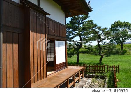佐賀城公園 歴史と自然と憩いの都市公園 34616936