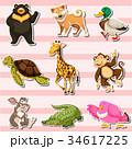 動物 貼り紙 シールのイラスト 34617225