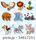 組み合わせ 動物 貼り紙のイラスト 34617251