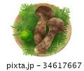 松茸 すだち キノコのイラスト 34617667