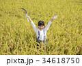 稲刈りをする子供 万歳 ポーズ 34618750