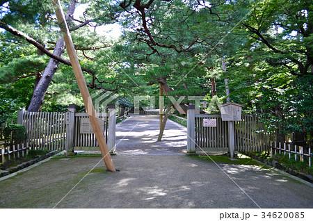 石川県金沢市兼六園の写真 34620085