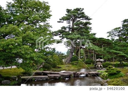 石川県金沢市兼六園の写真 34620100