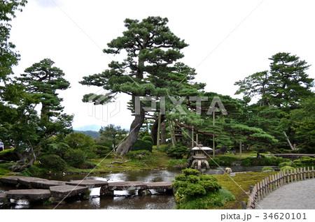 石川県金沢市兼六園の写真 34620101