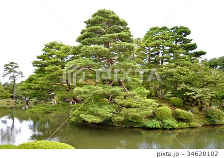 石川県金沢市兼六園の写真 34620102