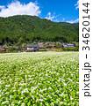 蕎麦の花と美山かやぶきの里 34620144