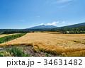 斜里岳 風景 麦畑の写真 34631482