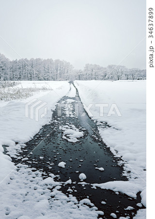 雪の森林、冬の風景。 34637899