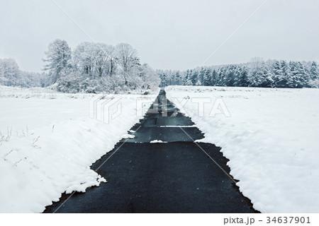 雪の森林、冬の風景。 34637901