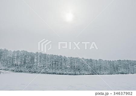 雪の森林、冬の風景。 34637902