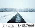 冬 森林 雪の写真 34637906