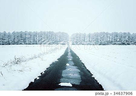 雪の森林、冬の風景。 34637906
