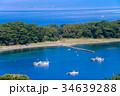 御浜岬 海 西伊豆の写真 34639288