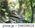 古い革のブーツと双葉 34639628