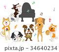 犬のコンサート 34640234