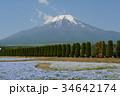 花の都公園 富士山 花畑の写真 34642174