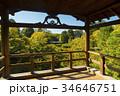 通天橋 東福寺 紅葉の写真 34646751